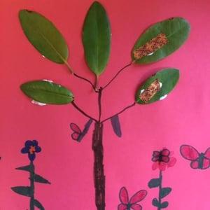 6. plant a garden